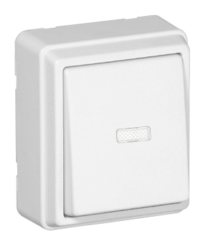 Rocker Push-button Switch with Orienting Light