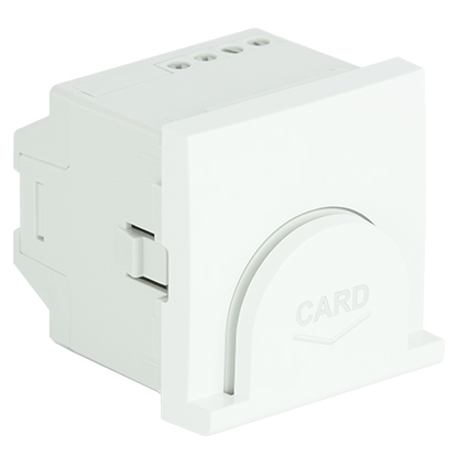 Interrupteur Card-System Temporisé - 2 modules