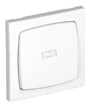 Single Pole Switch with Pilot Lamp